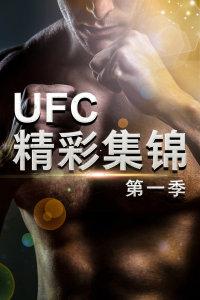 UFC精彩集锦 第一季