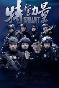 特警力量 DVD版