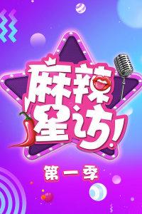 麻辣星访 第一季