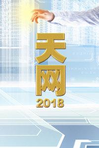 天网 2018