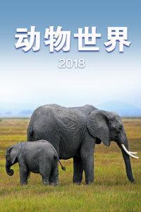 动物世界 2018