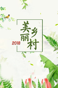 美丽乡村 2018