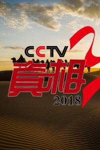 CCTV真相 2018