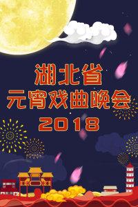 湖北省元宵戏曲晚会 2018