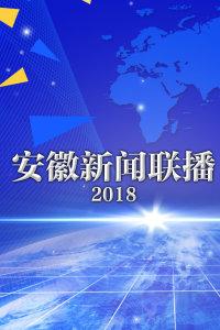 安徽新闻联播 2018