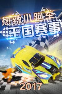 热辣小跑车王国赛事 2017
