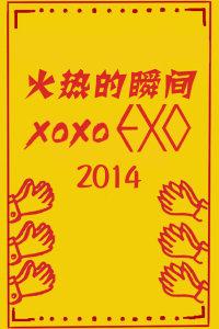 火热的瞬间XOXO EXO 2014