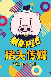 猪头传媒 2016 3月