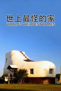 世上最怪的家