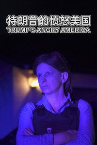 特朗普的愤怒美国