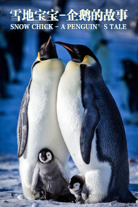 雪地宝宝:企鹅的故事