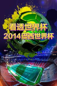 看透世界杯 2014巴西世界杯