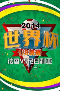 2014世界杯 1/8决赛 法国VS尼日利亚 7月1日