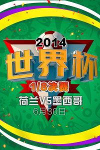 2014世界杯 1/8决赛 荷兰VS墨西哥 6月30日