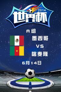2014世界杯 A组墨西哥VS喀麦隆 6月14日