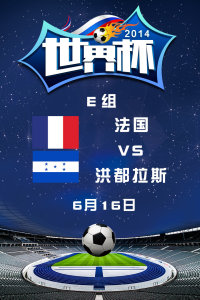 2014世界杯 E组法国VS洪都拉斯 6月16日