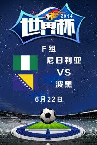 2014世界杯 F组尼日利亚VS波黑 6月22日