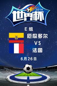 2014世界杯 E组厄瓜多尔VS法国 6月26日