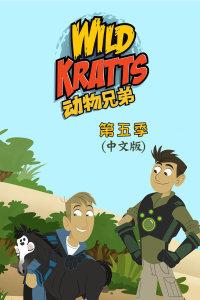 动物兄弟 第五季 中文版