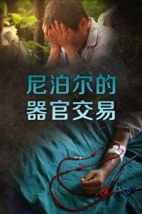 尼泊尔的器官交易