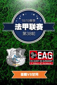 法甲联赛18/19赛季 第38轮 亚眠VS甘冈