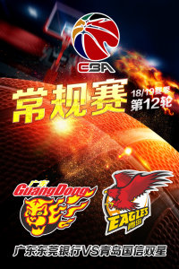 CBA 18/19赛季 常规赛 第12轮 广东东莞银行VS青岛国信双星