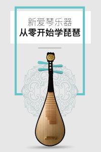 新爱琴乐器 从零开始学琵琶
