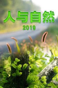 人与自然 2019