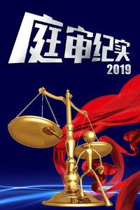 庭审纪实 2019