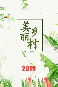 美丽乡村 2019