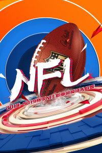 2018-2019赛季NFL职业橄榄球大联盟