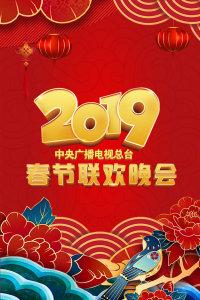 中央广播电视总台春节联欢晚会 2019