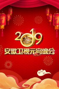 安徽卫视元宵晚会 2019