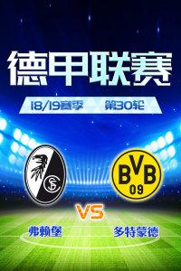 德甲联赛18/19赛季 第30轮 弗赖堡VS多特蒙德