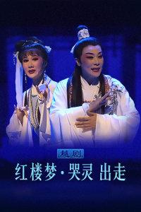 越剧《红楼梦·哭灵出走》