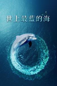 世上最蓝的海