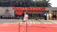 2017元宵节龙华花半里清风醉太极协会---中国功夫