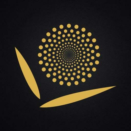 中澳国际电影节