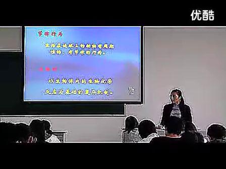初二生物优质课展示
