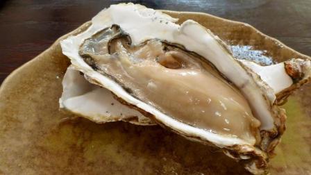 海边人天天吃的牡蛎, 除了补气益精, 还有这个作用? 你肯定不知道!