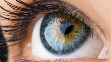 眼睛4种表现暗示肝不好, 若没有, 你的肝脏还算健康!