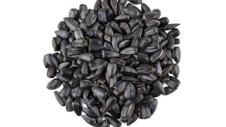 专家为您揭秘葵花籽吃多真的能引起脂肪肝吗?