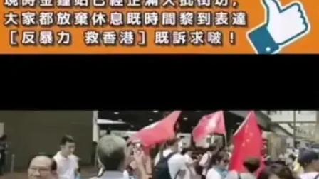金钟添马公园举行大集会:反暴力 救香港!