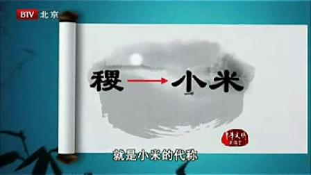 中医文化与养生.第02讲:什么才是真正的养生.20100822