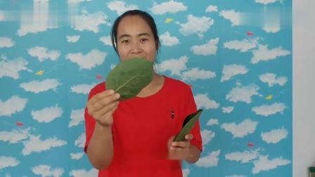 农村常见柿子叶,这2个用途真厉害!一年能省几千块,网友:点赞