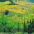 涡阳林业协会