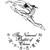 中央芭蕾舞团视频