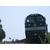 Ha_Qi_North_Bureau_Trains