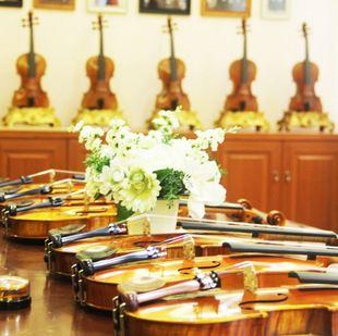 琴界网-曹氏提琴专卖