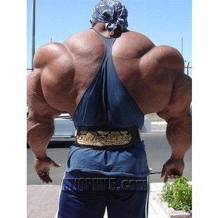 健美肌肉男教健身